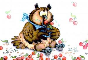 """""""Le hibou mangeur de cerises"""""""