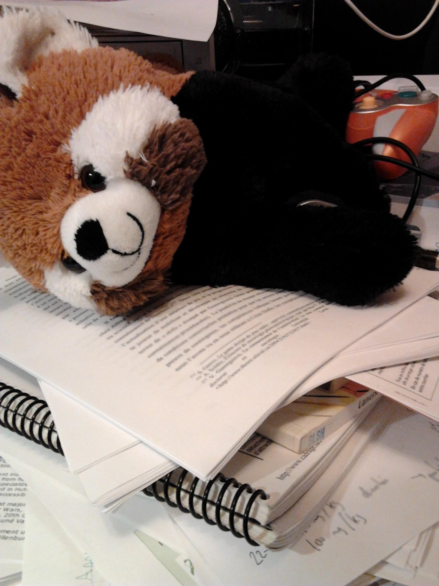 Le panda roux de Laurent acheté au Zoo de Granby à sa fête, endormi sur une pile de textes photocopiés près d'une GameCube.